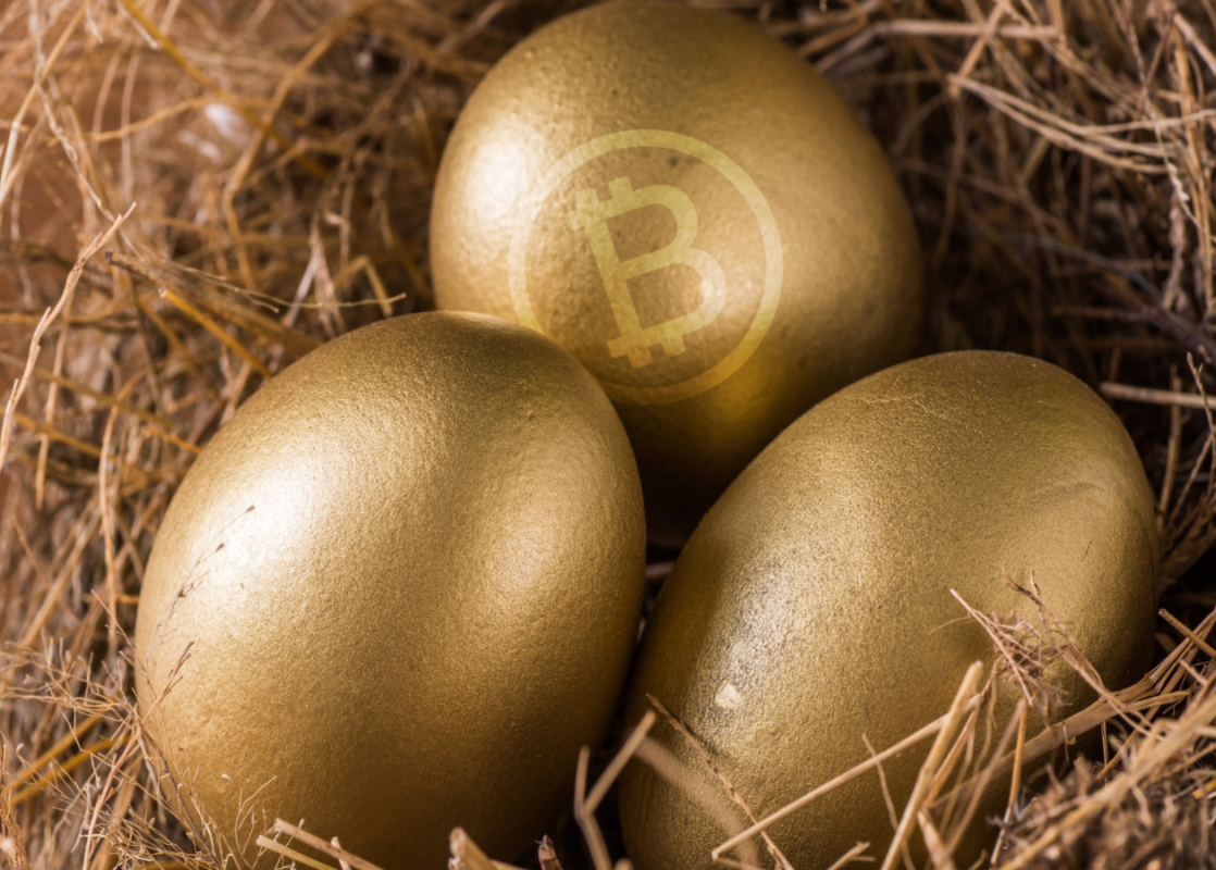 Cryptocurrency SMSF nest egg